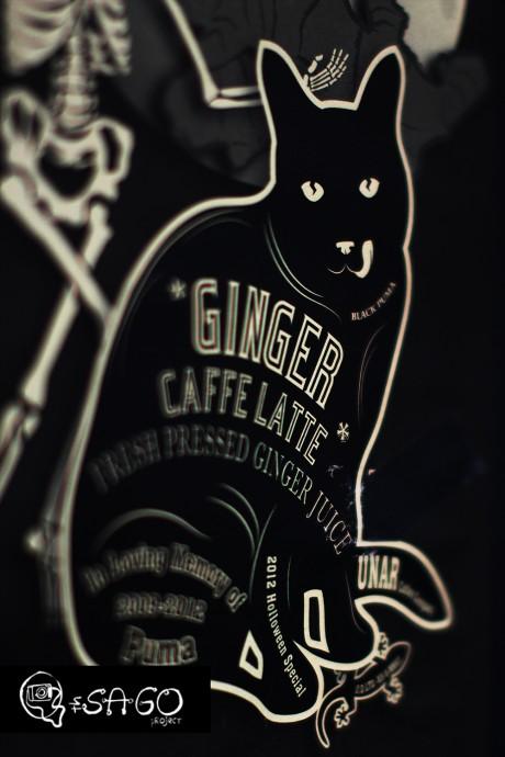Cat Illustration : Ginger Cafe Latte