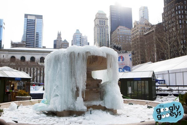 18 Bryant Park Frozen IMG_9656