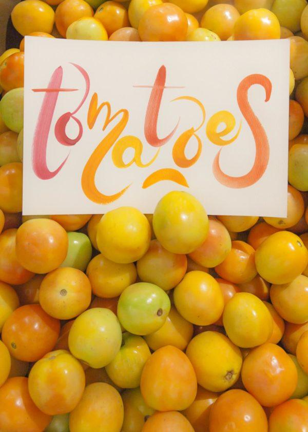02 Tomatoes IMG_1656