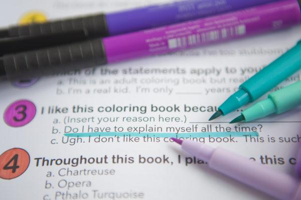 Faber-Castell Pitt Pens
