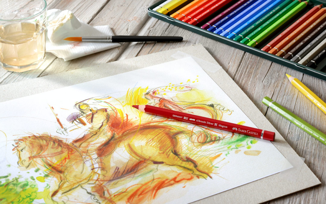 10 Things You Didn't Know About Albrecht Durer Watercolour Pencils